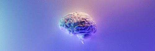 Chip no cérebro permite escrever sem usar as mãos. Entenda essa descoberta